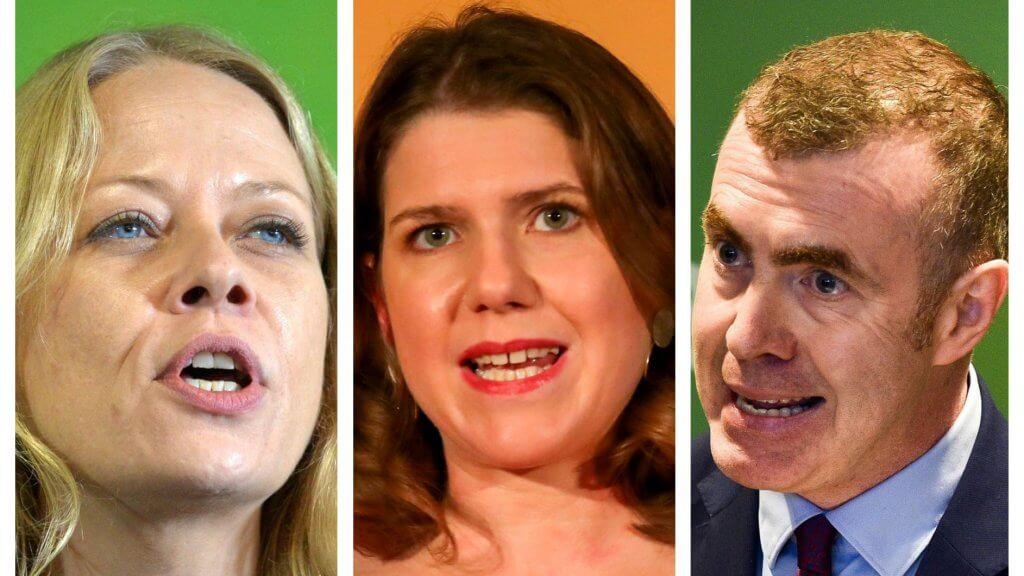 Lib Dems Greens Plaid