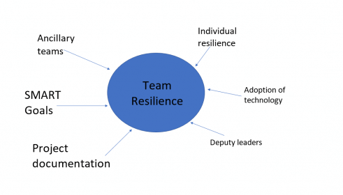 project team resilience