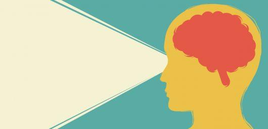 perception cognition